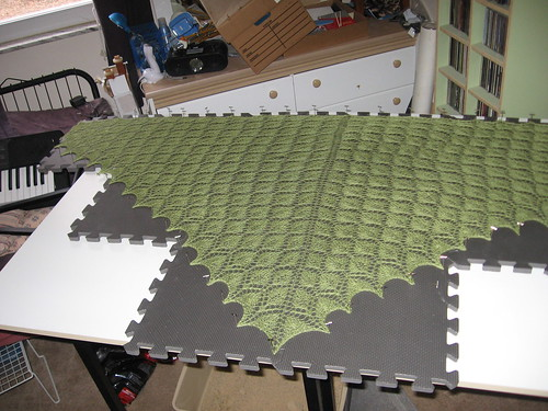 Leaf Lace Shawl, complete