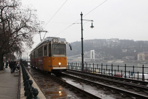 Elizabeth Bridge in the background, a Budapest tram trundles along the Danube