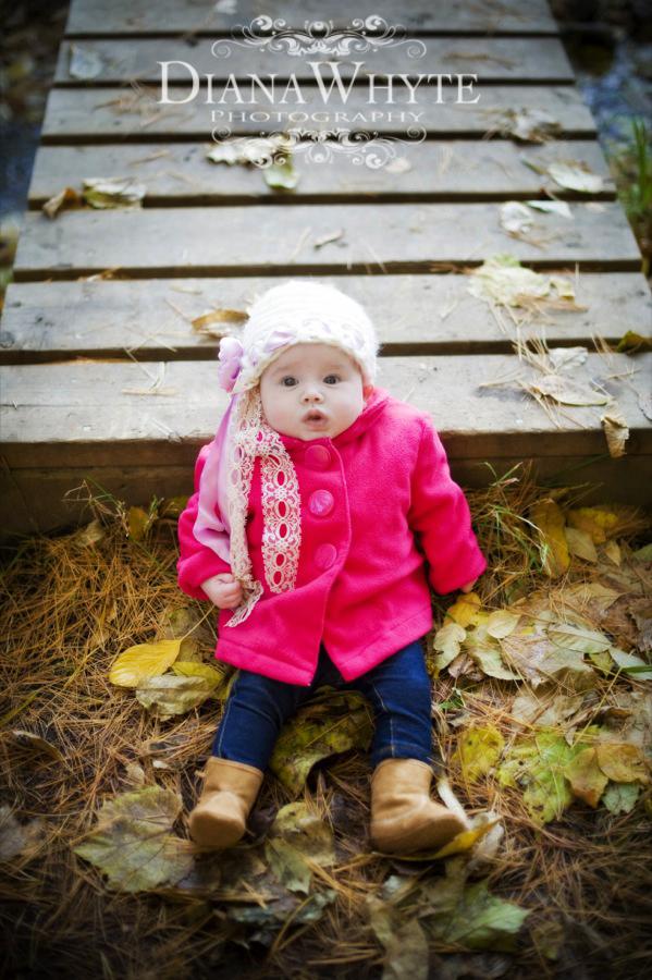 Paisley Fall 2012 12