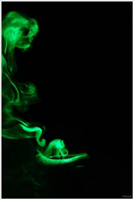 Smokey (20D35159)