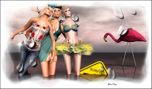 Three Birds and A Flamingo