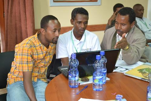 Trainees practicing SLATE on their laptops (photo credit: ILRI/Simret Yasabu)