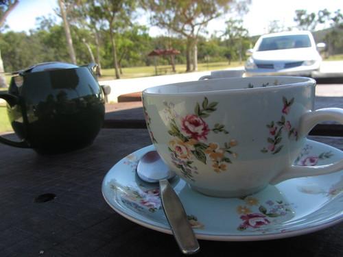 grey gum teacup