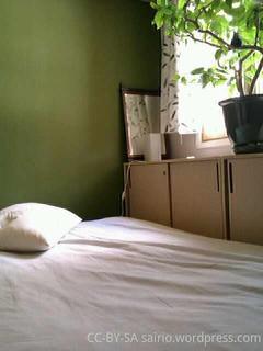 sänky-ja-vihreä-seinä