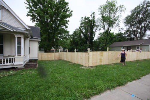 New Fence (June 2013) 056