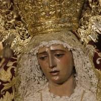 Besamanos María Santísima de la Amargura (2012)