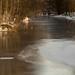 River flows beneath