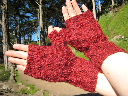 Mitts_2013_01_16_Reticulated-Mitts_3