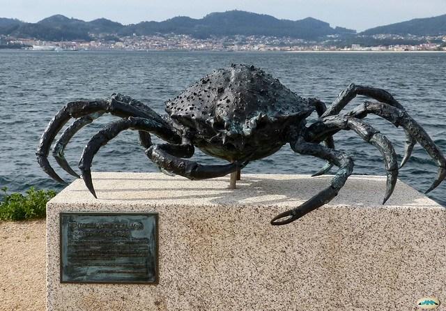 Vigo-Paseo de Bouzas-Una centolla