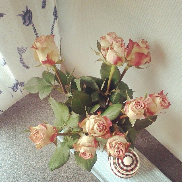 Roses from a friend.