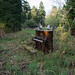 20130505-sam_bailey_forest_piano-022