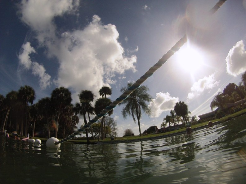 Go with the Clockwise Flow at Warm Mineral Springs in North Port, Fla.