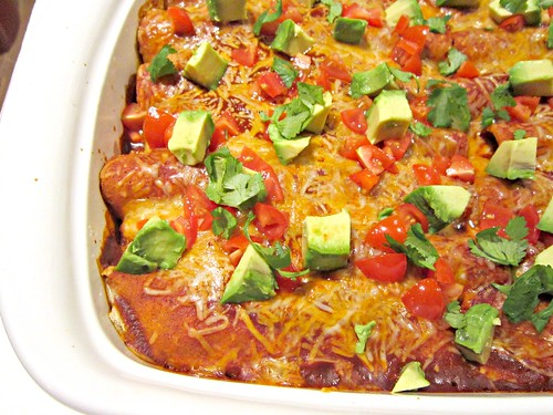 Venison Enchiladas Close-Up