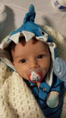 Shark Ethan from Jade