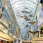 Viajefilos en Canada, Quebec-Toronto 20