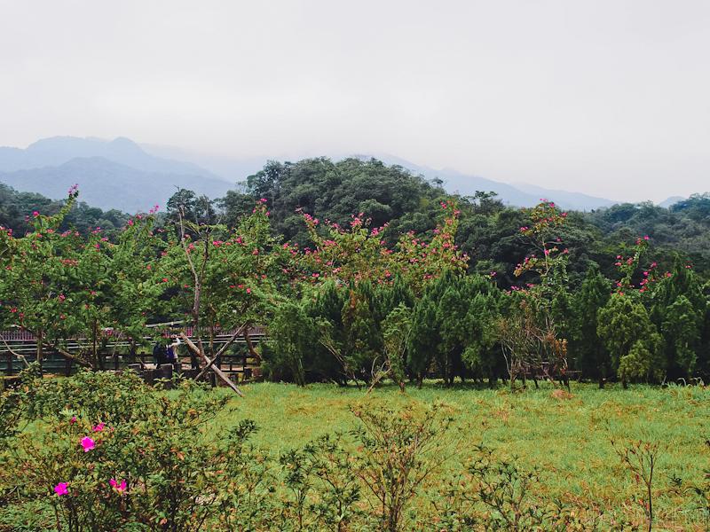 Shi-Fen-Taiwan-29