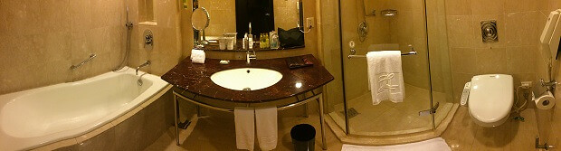 160717 大億ランディスホテル台南(Tayih Landis Hotel, TAINAN)3