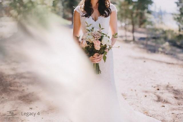lens-distortions-photoshop-plugin-film-emulation-wedding