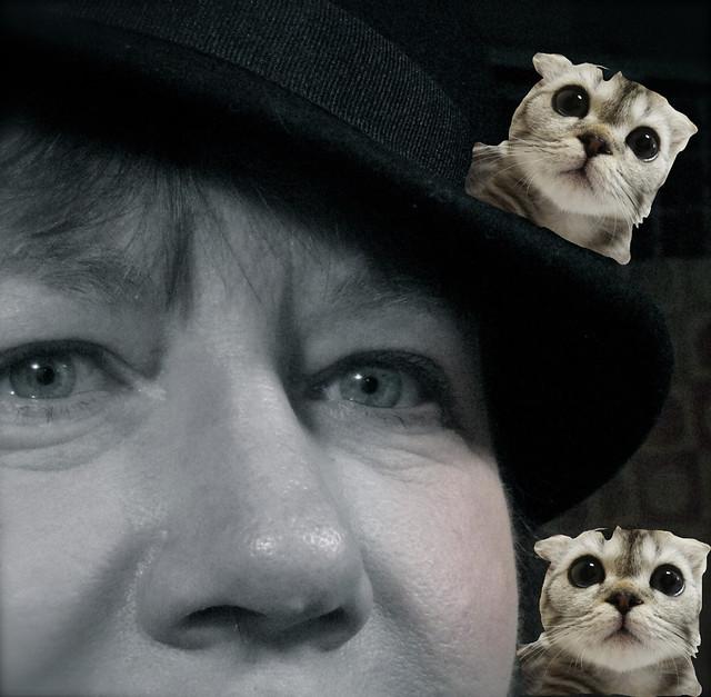 Noir Selfie w/ Cats