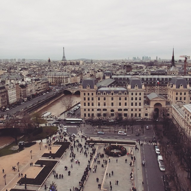 Paris Day One: View from the top of Notre Dame.
