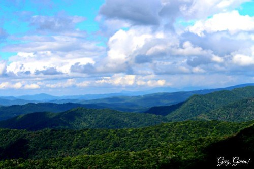 Roan Mountain View