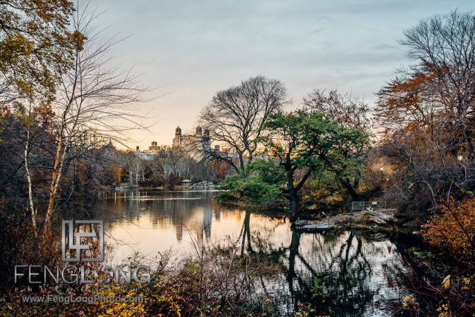 Central Park | New York City Thanksgiving 2014 | Sony A7R