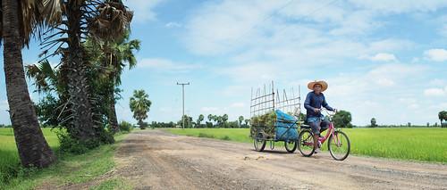 rice farmer bike