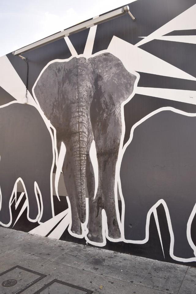 streetart7a