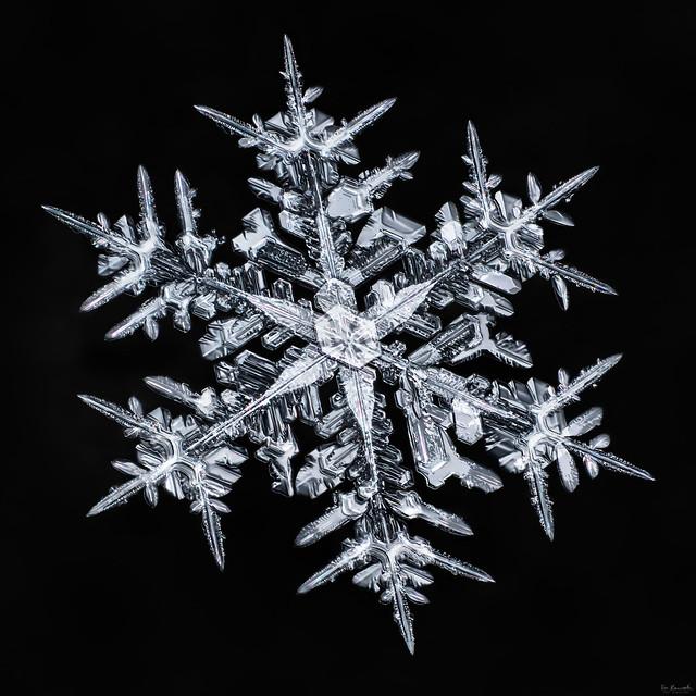 Snowflake-a-day#93, snowflake macro photo by Don Komarechka