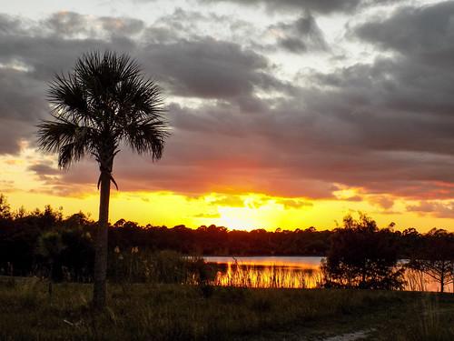 Indrio Sunset Nikon