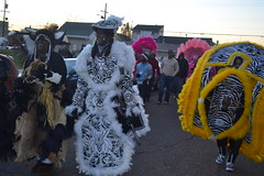 143 Downtown Indians in the Treme