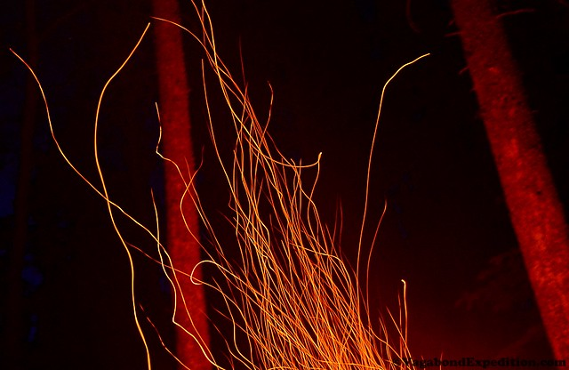 1024 - ve - playing with fire - tails DSC_2474