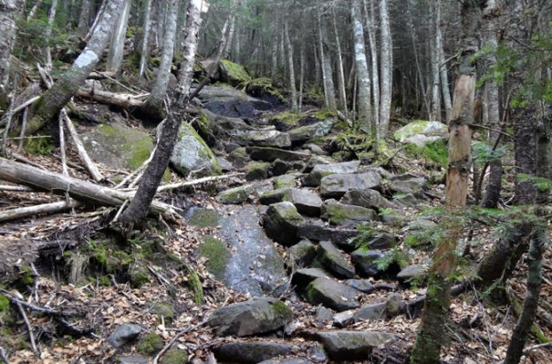Baldpate's Rocky AT Climb