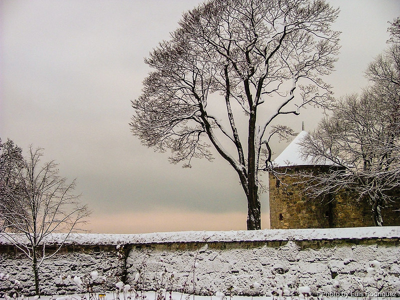 Fortaleza de Akershus-24
