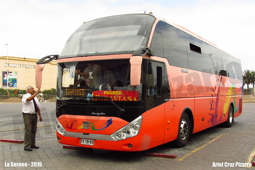 Pullman Paravias (Palmira) - La Serena (Chile) - Zhongtong Navigator (FXYB83)