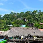 07 Viajefilos en Panama. Isla Bastimentos 03