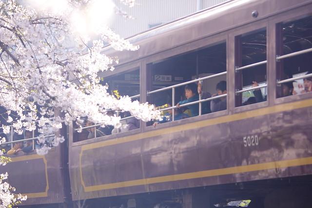 "Watarase Keikoku Railway Special train ""Hana peach"" DE10-1537"