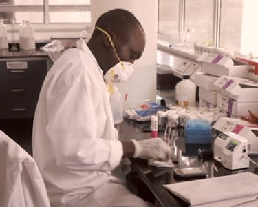 Chacha at work in the lab