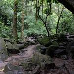09 Viajefilos en Panama, Valle de Anton 22