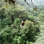 03 Viajfilos en Panama. Canopy en Boquete 15
