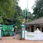 14 Viajefilos en Sri Lanka. Yala 47