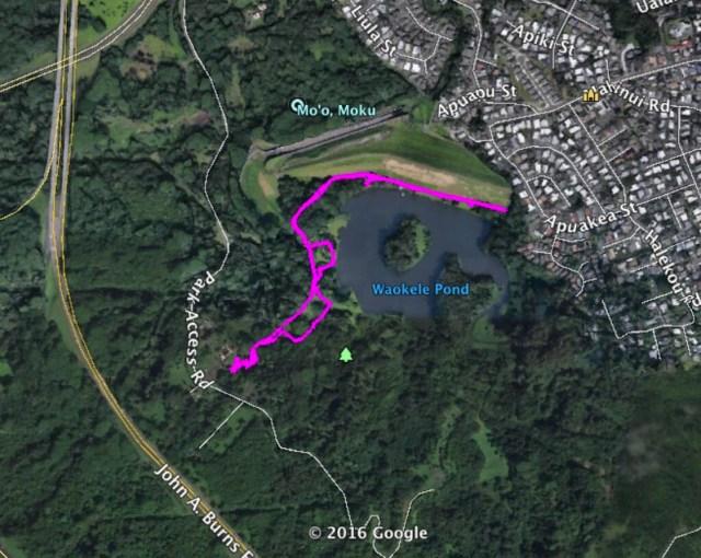 Hoomaluhia Garden Trail