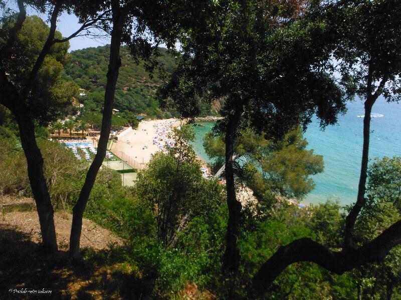 Cala Santa Cristina - Lloret de Mar