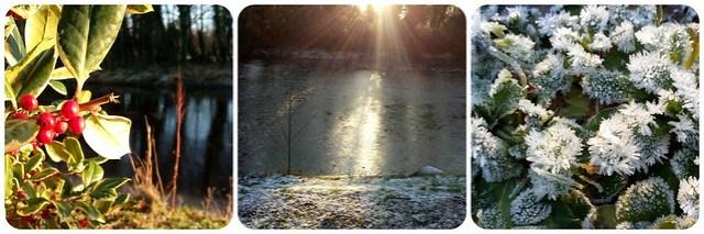 Winter walk/frozen lake