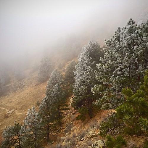 Cloudy Arthurs Rock Trail