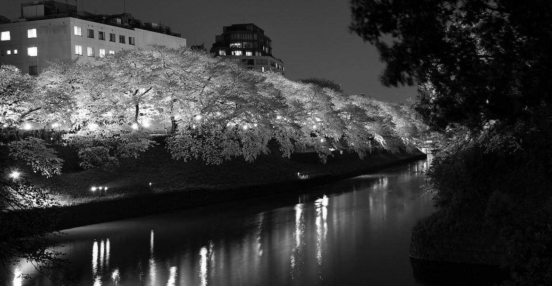 Chidorigafuchi Illumination B&W