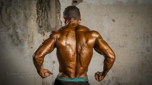 bodybuilding championship 2015  bodybuilding championship 2015 16749490291 65899f948d