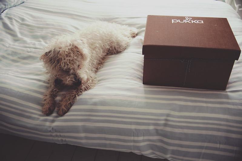 Pukka Herbs Sleep Hamper