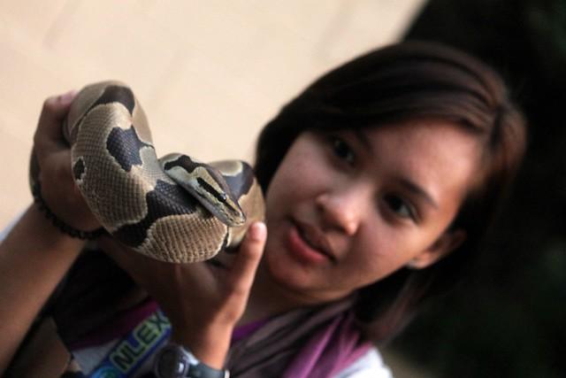 Wildlife in Need (WIN) Rescue Center