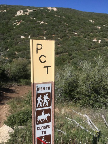 PCT marker, Day 5